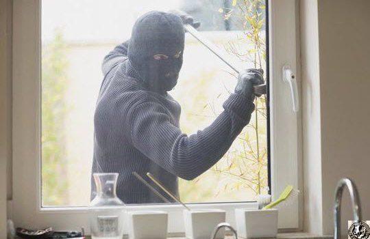 Домашняя система охраны